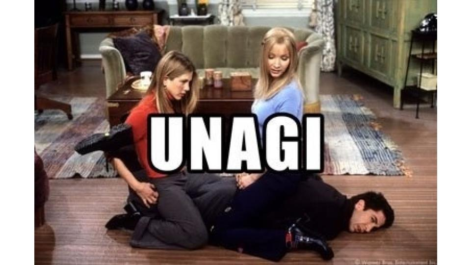 Так девушки обучают Росса мастерству Унаги