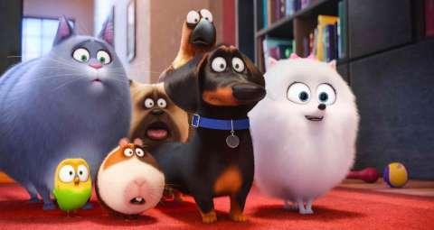 Сиквел «Тайной жизни домашних животных» выйдет в 2018 году
