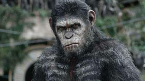 Вышел первый тизер «Войны планеты обезьян»