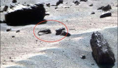 На Марсе обнаружили признаки жизни животных