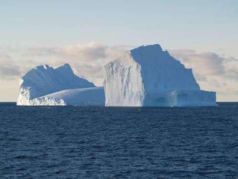 В Антарктике откроют крупнейший в мире заповедник