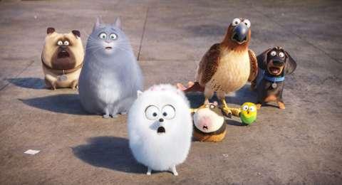 Студия Universal Pictures объявила дату выхода «Тайной жизни домашних животных – 2»