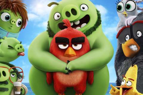 Кто ты из Angry Birds?