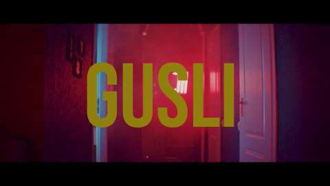 GUSLI - На взлет